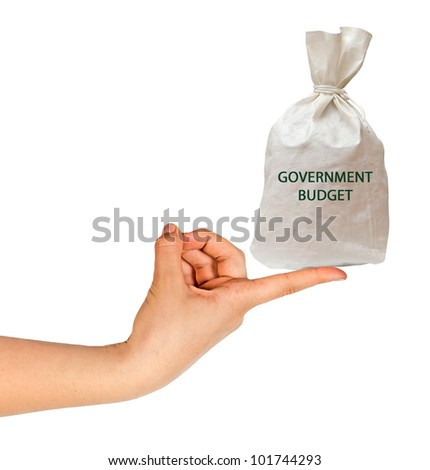 Bag with government budget - stock photo