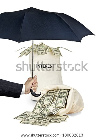 Bag with interest - stock photo