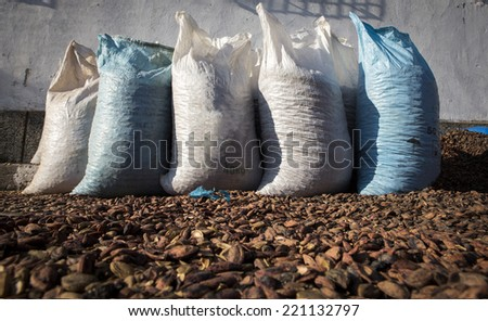 Bags of plum pyrenes/Part of the technology of producing plum brandy.  - stock photo
