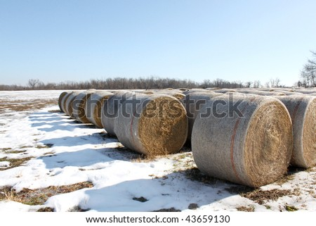 Bails of hay on snowy field - stock photo