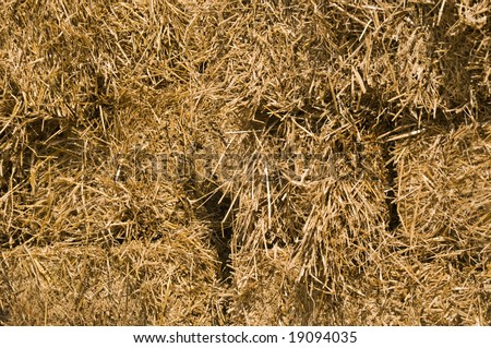 Bails of hay perfect for a fall background or decoration. - stock photo