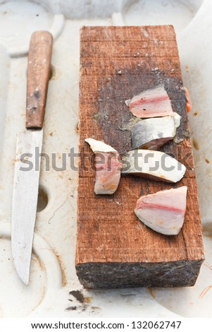 Bait for fishing, cut into pieces - stock photo
