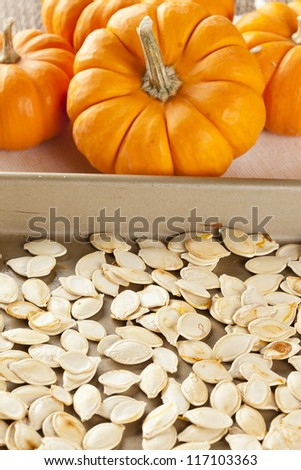 Baked and Salted Pumpkin Seeds on a background - stock photo