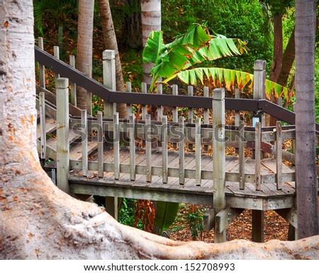 Balboa Park Scenic Nature Walkway in Palm Canyon, San Diego California, USA, California Tourism - stock photo