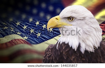 Bald eagle with grungy looking american flag out of focus. - stock photo