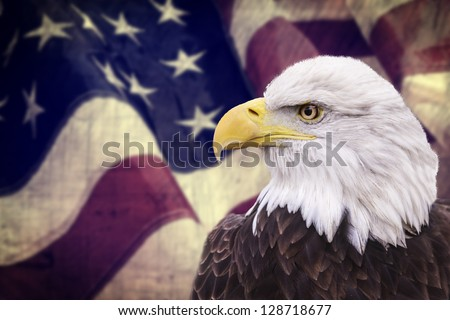 Bald eagle with the american flag out of focus and grunge look. - stock photo