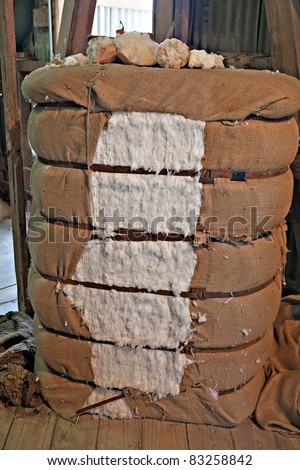 Bale of ginned cotton ready for delivery to cotton buyers. - stock photo