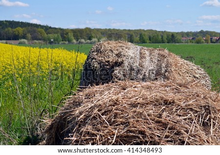 bale of hay lying near a rapeseed field with blue sky - stock photo