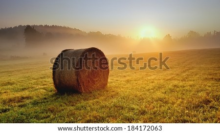 Bale of hay on the meadow during the sunrise - stock photo