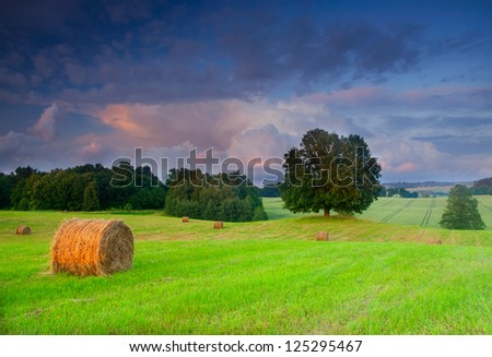 Bales of hay at sunset - stock photo