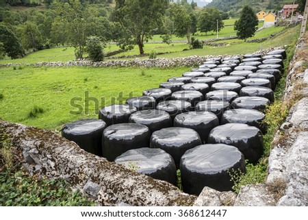 Bales of silage in a field in Somiedo Nature Reserve, Principality of Asturias, Spain - stock photo