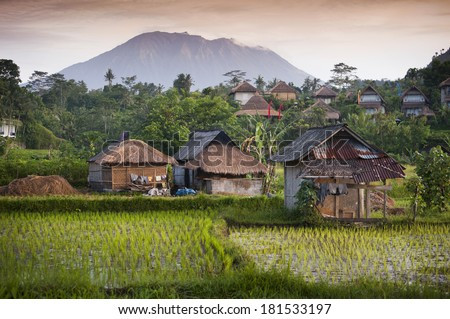 Bali Rice Fields. The village of Sidemen, in Bali, Indonesia, boasts some of the most beautiful rice fields in all of Asia. New rice is being planted to produce the highest quality product.  - stock photo