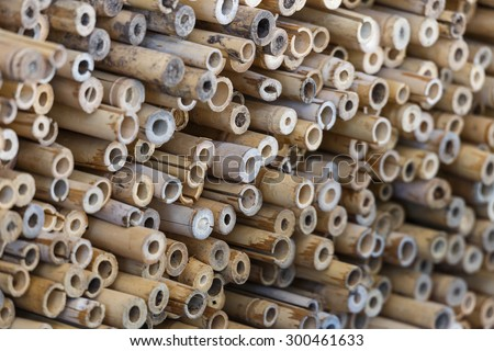bamboo cross slice on wall texture background - stock photo