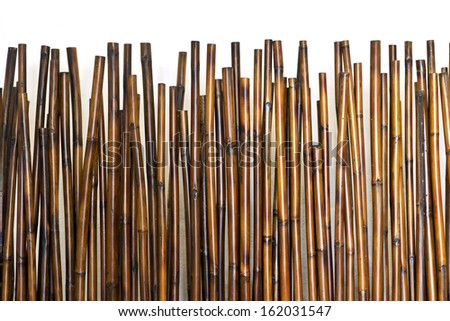 bamboo fence - stock photo