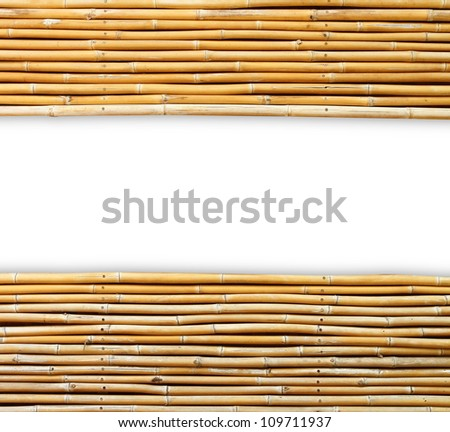 bamboo isolated on white background (Save Paths For design work) - stock photo
