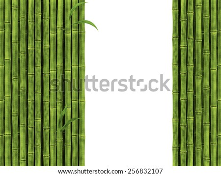 Bamboo Over The White Background - stock photo