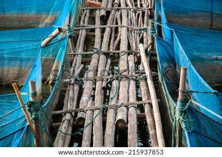 Bamboo pathway of Nile Tilapia Fish farms with blue net - stock photo