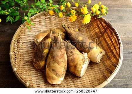 Bamboo shoots with Japanese kerria. Image of edible wild plants of Japan on spring season. - stock photo