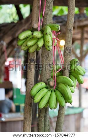 Bananas for sal - stock photo