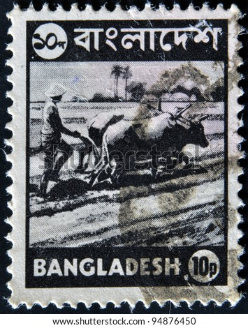 BANGLADESH - CIRCA 1973: A stamp printed in Bangladesh shows farmer plowing a rice field on the Bulls, circa 1973 - stock photo