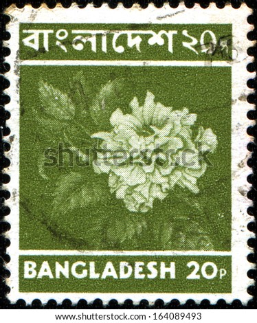 BANGLADESH - CIRCA 1973: Stamp printed in Bangladesh shows flowerRakta jaba, circa 1973 - stock photo