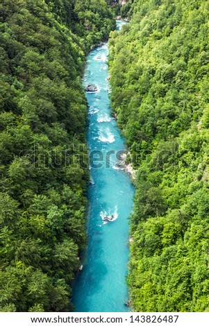 Bank of the mountain river and forest in Montenegro. - stock photo