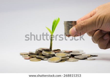 bank,piggy bank,Money,Coins,Concept,Tree, Sprout growing on glass piggy bank in saving money concept - stock photo