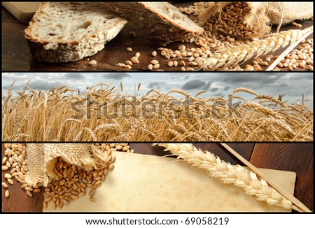 Banners - Wheat and Bread, Shallow DOF - stock photo