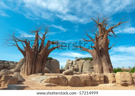 Baobab Tree at blue sky background - stock photo