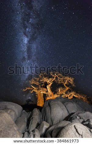 Baobabs, Rocks and the Milkyway - stock photo