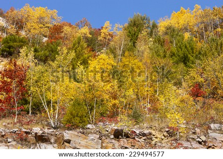Baraboo, Wisconsin, USA - October 1, 2012:  Fall colored trees on Devil's Lake hillside.   - stock photo