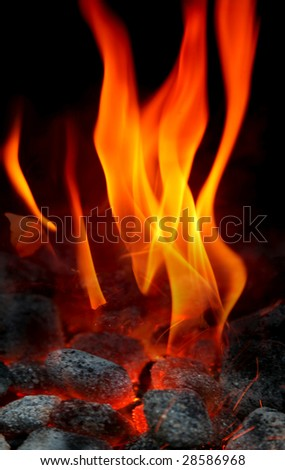 Barbecue fire close up - stock photo