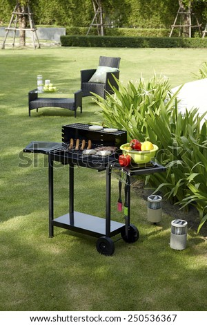 barbecue grill in the garden  - stock photo