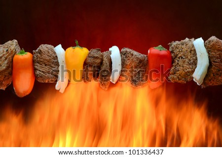 Barbecue kabob over hot fire - stock photo