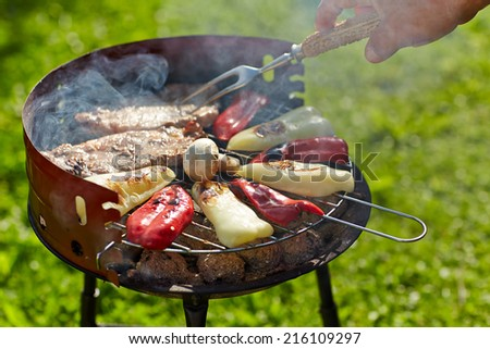 Barbecue steak on the grill at summer - stock photo