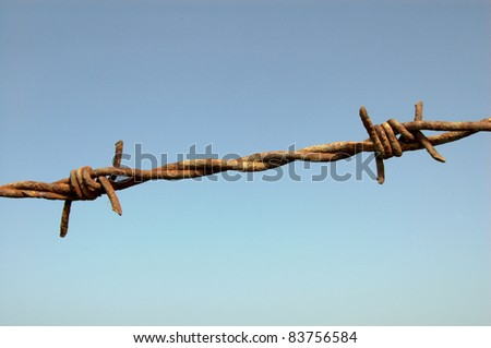 Barbed Wire Detail Against Blue Sky Close-up of two barbs on a barbed wire fence, taken against a blue sky. - stock photo