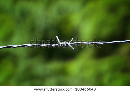 Barbed Wire Entanglement Detail - stock photo