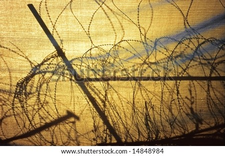 Barbed wire entanglement in Nicosia, between Cyprus et Turkey zones. The sun draws its silhouette on a tarpaulin. - stock photo