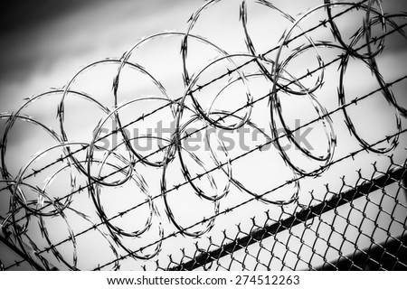 Barbed Wire Fence. Prison Fence in Black and White Closeup. - stock photo