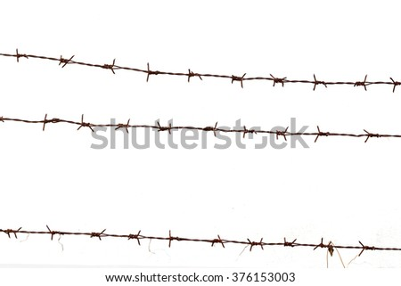 Barbed wire isolated - stock photo