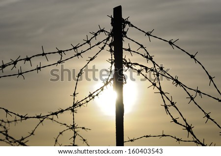 barbed wire, military fence - stock photo