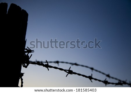 barbed wire on a blue sky background - stock photo