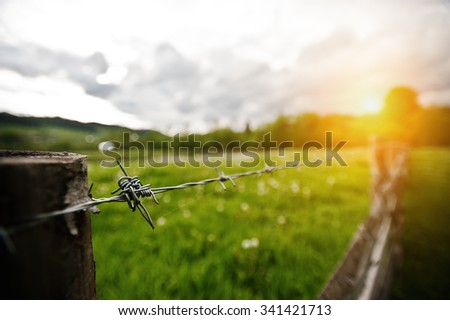 Barbed wire on sunny background - stock photo