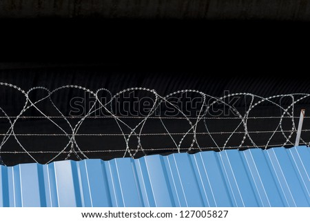 Barbed wire on top of blue metallic fence with copy space on top. - stock photo