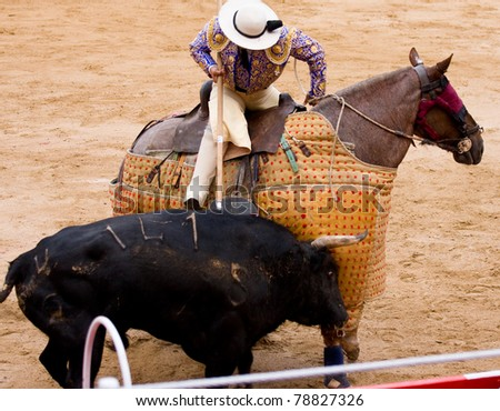 BARCELONA - JUNE 6: Bullfight, Spanish tradition where a bullfighter kills a bull. In the picture, a Picador, horsemen who jabs the bull with a lance. June 6, 2010 in Barcelona, Spain. - stock photo