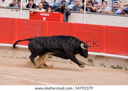 "BARCELONA - JUNE 6: ""Corrida"" (bullfight) of bulls, typical Spanish tradition where a torero (bullfighter) kills a bull. June 6, 2010 in Barcelona (Spain). - stock photo"