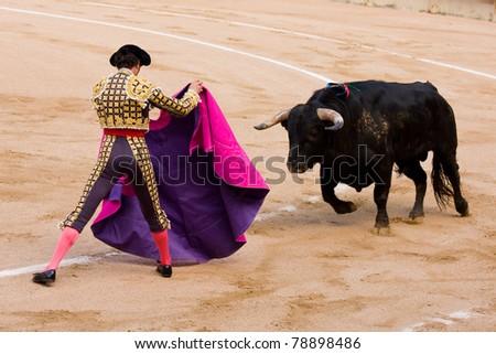 BARCELONA - JUNE 6: Finito de Cordoba in action June 6, 2010 in Barcelona, Spain. Corrida or Bullfighting, typical Spanish tradition where a torero or bullfighter kills a bull. - stock photo