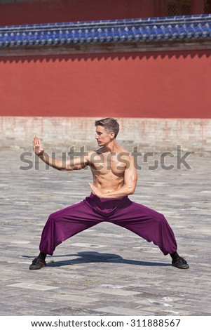 Bare chested muscled martial arts master practicing at Temple of Heaven, Beijing, China - stock photo