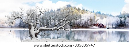 Bare tree covered in snow on cold winter day, with beautiful winter landscape by lake in background - stock photo