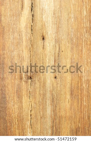 Bare tree trunk surface texture for use as background - stock photo